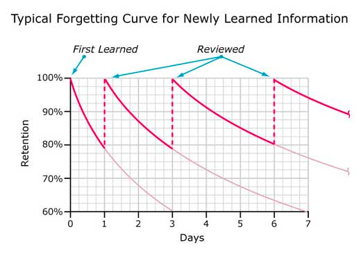 Chasing 10X: Leveraging A Poor Memory In Engineering