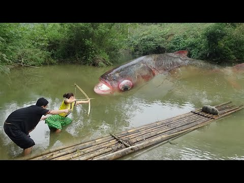 Primitive Life: Wild Life Catch Big Fish by Bow And Arrow – Survival Skills Unique Hand Fishing