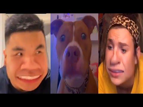 The Best Funny Tik Tok US – UK Compilation Of April 2020 #49